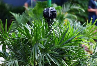 В Сингапуре Ф1 впервые опробовала 360-градусные камеры