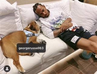 Гамілтон позначив Расселла на фото свого пса